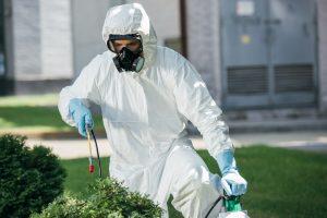 exterminator deduplicating pests